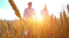 Young couple walking across the wheat field Stock Footage