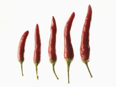 Red chilies in the order of size over white background Stock Photos