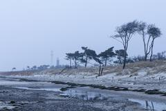 View of low tide at Baltic Sea against overcast sky, Prerow, Germany Stock Photos