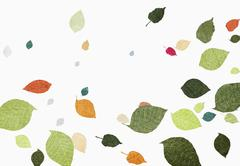 Multi colored leaves falling over white background Piirros