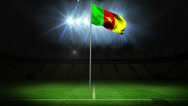 Stock Video Footage of Cameroon national flag waving on flagpole