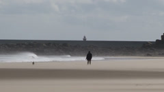 Man walking dog on windy beach in the summer time bad weather Stock Footage