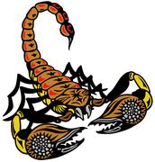 Scorpion Stock Illustration