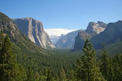 Yosemite park in california, usa Kuvituskuvat