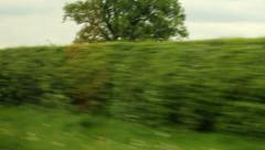 The view from the car window while driving. - stock footage