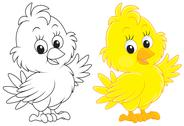 Stock Illustration of Chick