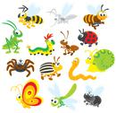 Stock Illustration of Insects