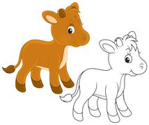 Calf - stock illustration