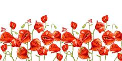 Seamless floral background with red poppy - stock illustration