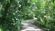 Stock Video Footage of Beltline Trail in Green Forest - no people