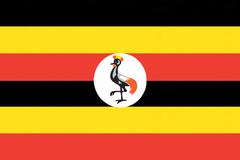uganda flag drawing by pastel on charcoal paper - stock illustration