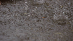 Raindrops striking pooling water Stock Footage