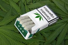 Pack of marijuana cigarettes on lefs Stock Photos