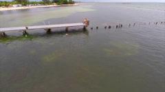 Aerial snorkling in the keys - stock footage
