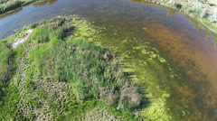 Aerial farm river stagnant pollution HD 066 - stock footage