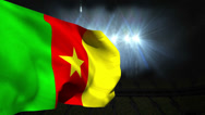 Stock Video Footage of Large cameroon national flag waving