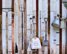 farm tool pitchfork and two shovels against old wooden wall use as rural farm - stock photo