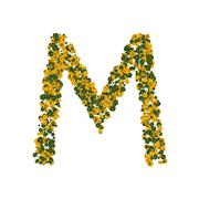 letter m made from green and yellow bell peppers - stock photo