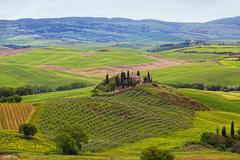 Rural house on the hill among vineyards, san quirico d'orcia,  tuscany, italy Stock Photos