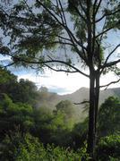 Misty Asian MountaIn View Stock Photos