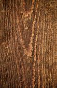 detail of wood timber with rough structure - stock photo