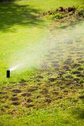 gardening. lawn sprinkler spraying water over grass. - stock photo