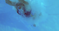 Low angle view of fit swimmer in pool Stock Footage