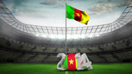 Stock Video Footage of Cameroon national flag waving in football stadium