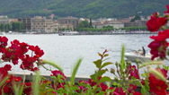 Stock Video Footage of Italy, lake Como and town Como landscape. Flowers on embankment.