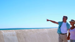 Active seniors going for walk by the sea - stock footage