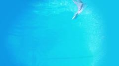 Pretty brunette diving underwater into pool - stock footage