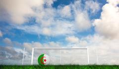 Composite image of football in algeria colours - stock illustration