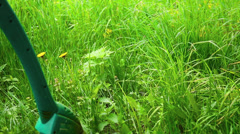 Man mowes the lawn with the grass trimmer. Stock Footage