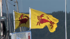 Crab Flags Waving at the Dock Stock Footage