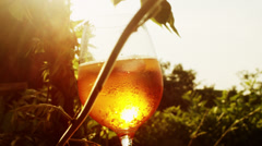 Glass of Sparkling Wine in Sunlight Stock Footage