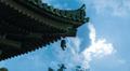 Moonlit Japanese Pagoda Time Lapse (4K) Footage