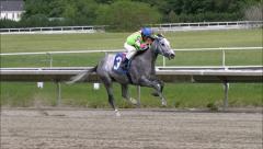 Horse Racing winning ride Stock Footage