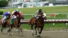 Horse race crosses finish line Stock Footage