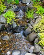 Bubbling brook water featuer Stock Photos