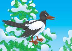 Magpie - stock illustration