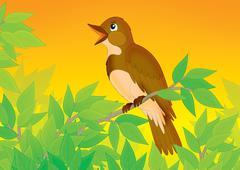 nightingale - stock illustration