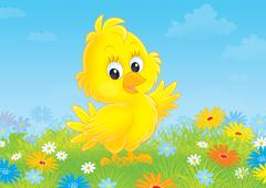 Chick - stock illustration
