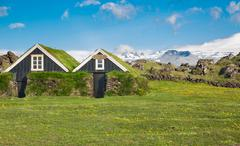 Typical scandinavian houses with grass on the roof - stock photo