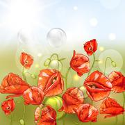 Bunch of Beautiful Red Poppy with Lights. Stock Illustration