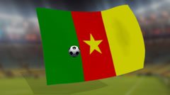 Soccer world cup 2014 - Cameroons flag - background video Stock Footage