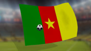 Stock Video Footage of soccer world cup 2014 - Cameroons flag - background video