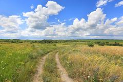 rural road in steppe - stock photo