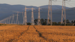 High voltage line and gold wheat land, industry and agriculture together Stock Footage