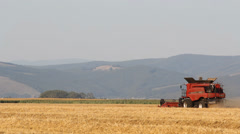 Farmer working his land, harvesting the crop  Stock Footage