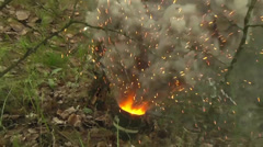 Lithuanian Soldiers defend their positions at Saber Strike 2014 Stock Footage